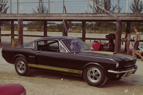 Shelby Mustang GT 350H von 1966 (© Ford Motor Company)