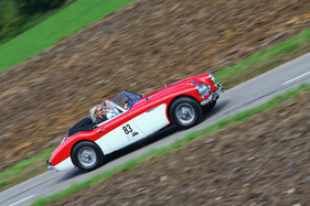 Austin-Healey 3000 Mark II (1965) - am Gempen Memorial 2014 (1965)