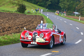 Jaguar XK 120 OTS (1953) - am Gempen Memorial 2014 (1953)