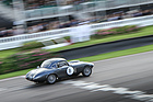 Nicholas Pellett im Frazer Nash Le Mans Coupe (1953) - Fordwater Trophy - Goodwood Revival 2015 (1953)