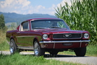 Ford Mustang Fastback (1966)