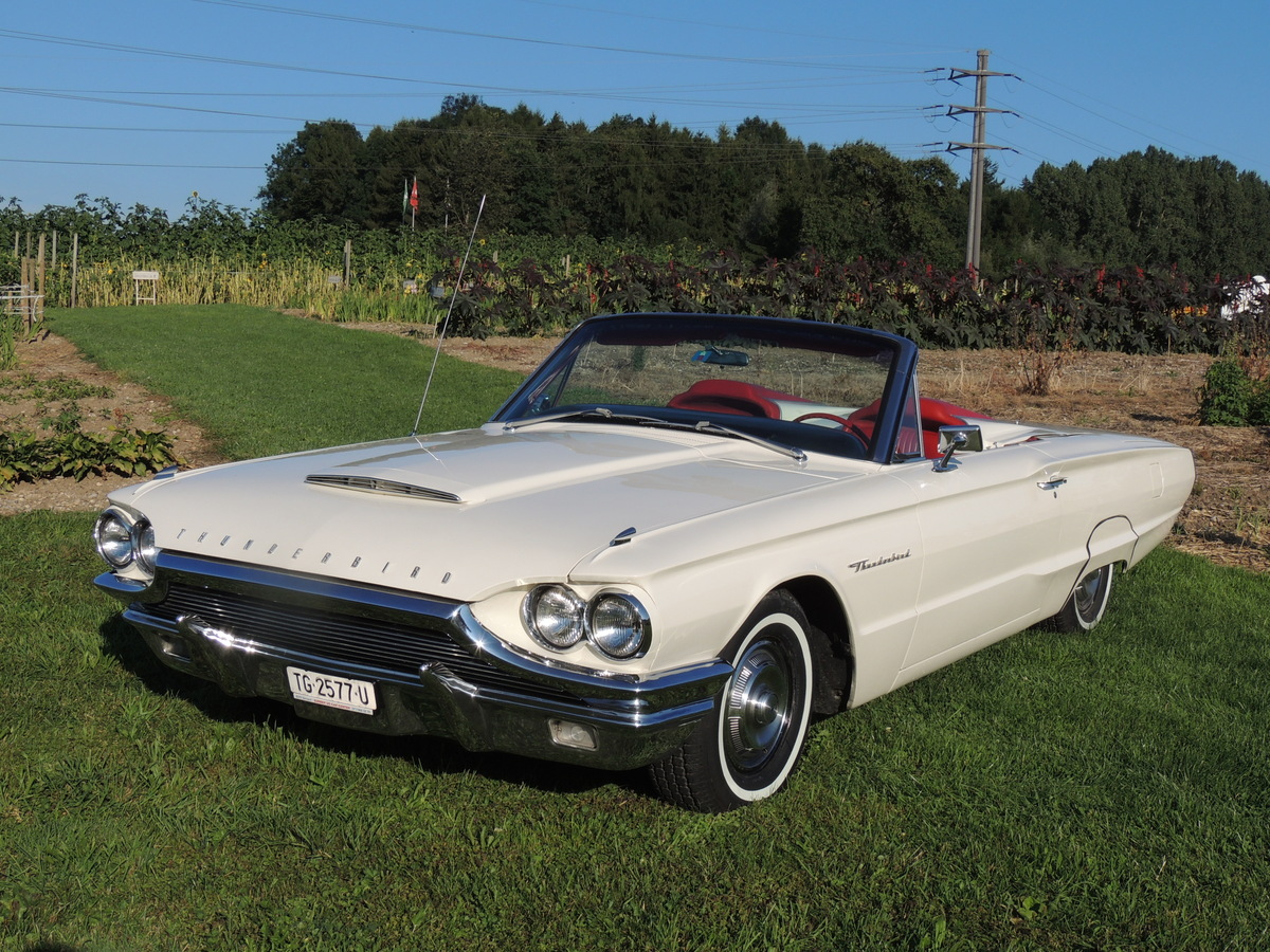 ford thunderbird sport roadster 1964 oldtimer kaufen. Black Bedroom Furniture Sets. Home Design Ideas